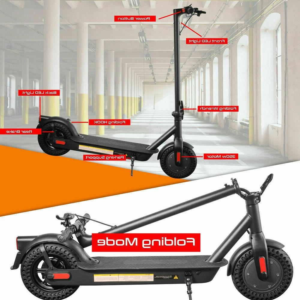 """Electric Outdoor Scooter 350W 10"""""""