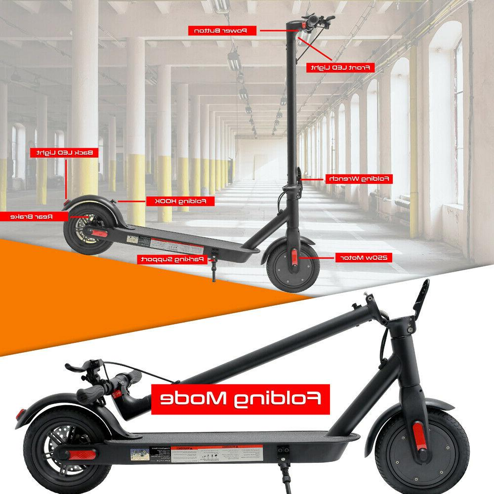 Electric Scooter Lightweight Digital Display 250W Brushless Motor