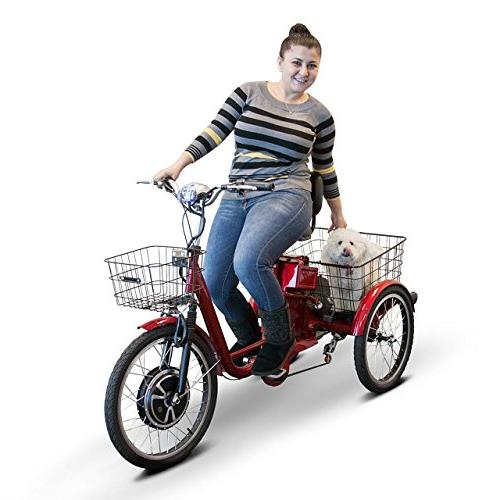 EWheels Electric Trike